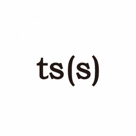ts(s) Logo